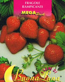Semillas De Fresas Trepadoras