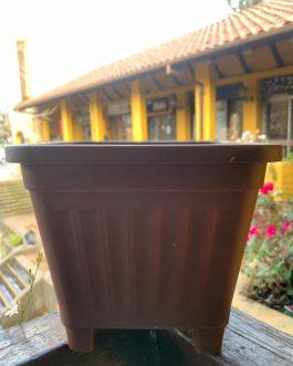 Macetero Cuadrado Café 15 Cm