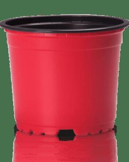 Macetero VCG-10.5 cm Rojo