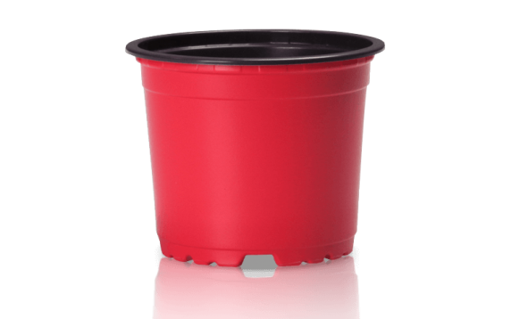 Macetero Rojo