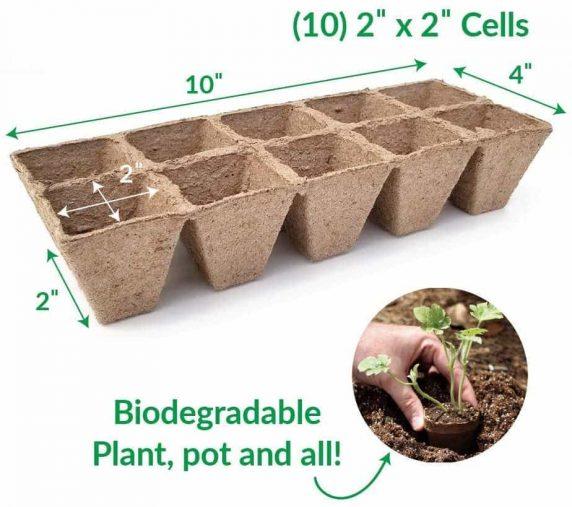 Bandeja Almaciguera Biodegradable 10 Cavidades
