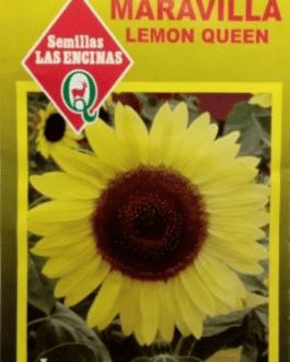 Semillas de Girasol Maravilla Lemon Queen
